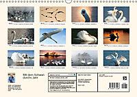 Mit dem Schwan durchs JahrAT-Version (Wandkalender 2019 DIN A3 quer) - Produktdetailbild 13