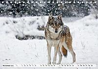 Mit dem Wolf durch's Jahr (Tischkalender 2019 DIN A5 quer) - Produktdetailbild 8