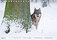 Mit dem Wolf durch's Jahr (Tischkalender 2019 DIN A5 quer) - Produktdetailbild 3