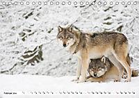 Mit dem Wolf durch's Jahr (Tischkalender 2019 DIN A5 quer) - Produktdetailbild 2
