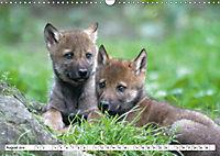 Mit dem Wolf durch's Jahr (Wandkalender 2019 DIN A3 quer) - Produktdetailbild 2