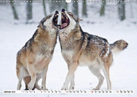 Mit dem Wolf durch's Jahr (Wandkalender 2019 DIN A3 quer) - Produktdetailbild 12