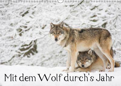 Mit dem Wolf durch's Jahr (Wandkalender 2019 DIN A3 quer), Wilfried Martin