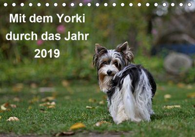 Mit dem Yorki durch das Jahr 2019 (Tischkalender 2019 DIN A5 quer), Friedhelm Bauer