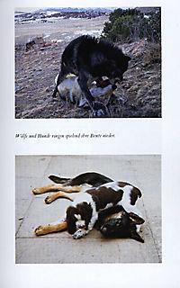 Mit Hunden sprechen - Produktdetailbild 7