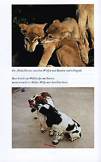 Mit Hunden sprechen - Produktdetailbild 6