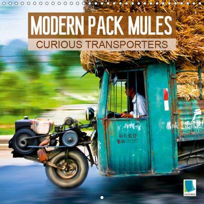 Modern pack mules: Curious transporters (Wall Calendar 2019 300 × 300 mm Square), CALVENDO