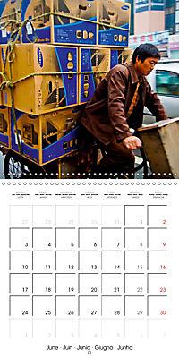 Modern pack mules: Curious transporters (Wall Calendar 2019 300 × 300 mm Square) - Produktdetailbild 6