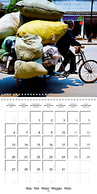 Modern pack mules: Curious transporters (Wall Calendar 2019 300 × 300 mm Square) - Produktdetailbild 5