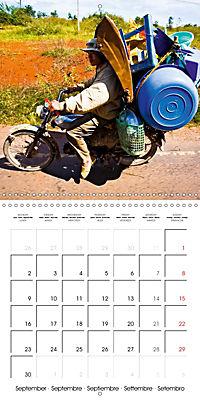 Modern pack mules: Curious transporters (Wall Calendar 2019 300 × 300 mm Square) - Produktdetailbild 9