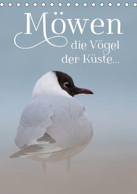 Möwen - die Vögel der Küste (Tischkalender 2019 DIN A5 hoch), Heidi Spiegler (anneliese-photography)