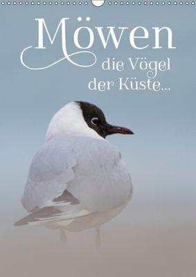 Möwen - die Vögel der Küste (Wandkalender 2019 DIN A3 hoch), Heidi Spiegler (anneliese-photography)
