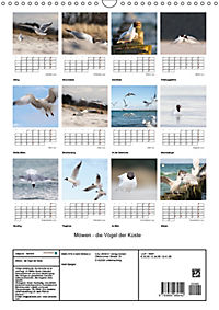 Möwen - die Vögel der Küste (Wandkalender 2019 DIN A3 hoch) - Produktdetailbild 13
