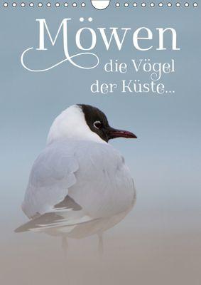 Möwen - die Vögel der Küste (Wandkalender 2019 DIN A4 hoch), Heidi Spiegler (anneliese-photography)