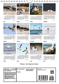 Möwen - die Vögel der Küste (Wandkalender 2019 DIN A4 hoch) - Produktdetailbild 13