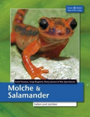 Molche und Salamander, Frank Pasmans, Sergé Bogaerts, Henry Janssen, Max Sparreboom