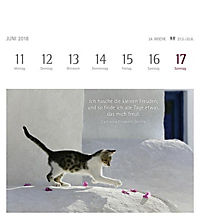 Momente des Glücks 2018 - Produktdetailbild 11