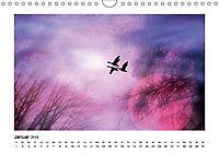 Momente zum Träumen (Wandkalender 2019 DIN A4 quer) - Produktdetailbild 1