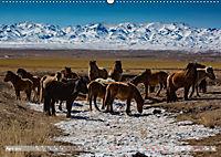 Mongolei - imposantes Land (Wandkalender 2019 DIN A2 quer) - Produktdetailbild 4