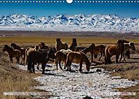 Mongolei - imposantes Land (Wandkalender 2019 DIN A3 quer) - Produktdetailbild 4