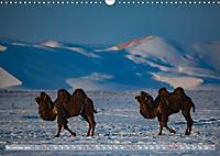 Mongolei - imposantes Land (Wandkalender 2019 DIN A3 quer) - Produktdetailbild 11