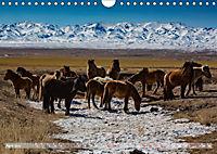 Mongolei - imposantes Land (Wandkalender 2019 DIN A4 quer) - Produktdetailbild 4