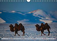 Mongolei - imposantes Land (Wandkalender 2019 DIN A4 quer) - Produktdetailbild 11