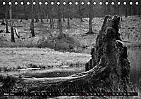 Monochromer Niederrhein (Tischkalender 2019 DIN A5 quer) - Produktdetailbild 5