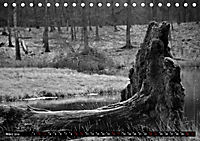 Monochromer Niederrhein (Tischkalender 2019 DIN A5 quer) - Produktdetailbild 3