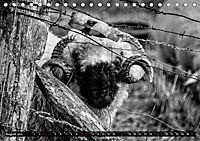 Monochromer Niederrhein (Tischkalender 2019 DIN A5 quer) - Produktdetailbild 8