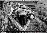 Monochromer Niederrhein (Wandkalender 2019 DIN A3 quer) - Produktdetailbild 8