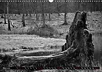 Monochromer Niederrhein (Wandkalender 2019 DIN A3 quer) - Produktdetailbild 3