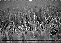 Monochromer Niederrhein (Wandkalender 2019 DIN A3 quer) - Produktdetailbild 7