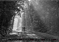 Monochromer Niederrhein (Wandkalender 2019 DIN A3 quer) - Produktdetailbild 9