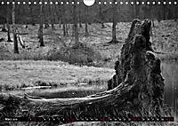 Monochromer Niederrhein (Wandkalender 2019 DIN A4 quer) - Produktdetailbild 3
