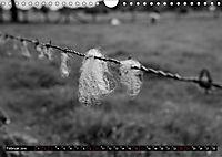 Monochromer Niederrhein (Wandkalender 2019 DIN A4 quer) - Produktdetailbild 2