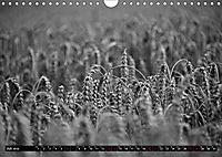 Monochromer Niederrhein (Wandkalender 2019 DIN A4 quer) - Produktdetailbild 7