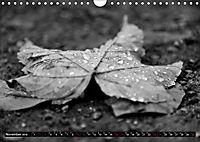 Monochromer Niederrhein (Wandkalender 2019 DIN A4 quer) - Produktdetailbild 11