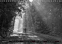 Monochromer Niederrhein (Wandkalender 2019 DIN A4 quer) - Produktdetailbild 9