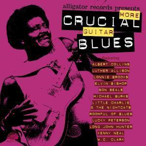 More Crucial Guitar Blues, Diverse Interpreten
