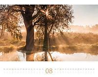 Morgenlicht 2019 - Produktdetailbild 8
