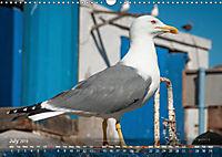 Moroccan Seaside (Wall Calendar 2019 DIN A3 Landscape) - Produktdetailbild 7