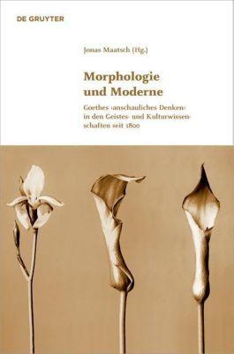 Morphologie und Moderne