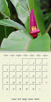 most beautiful plants of Hawai'i (Wall Calendar 2019 300 × 300 mm Square) - Produktdetailbild 8