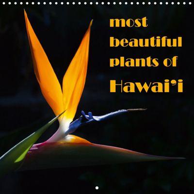 most beautiful plants of Hawai'i (Wall Calendar 2019 300 × 300 mm Square), Rudolf Friederich