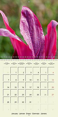 most beautiful plants of Hawai'i (Wall Calendar 2019 300 × 300 mm Square) - Produktdetailbild 1