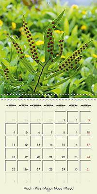 most beautiful plants of Hawai'i (Wall Calendar 2019 300 × 300 mm Square) - Produktdetailbild 3