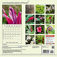 most beautiful plants of Hawai'i (Wall Calendar 2019 300 × 300 mm Square) - Produktdetailbild 13