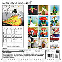 Mother Nature's Beauties 2019 (Wall Calendar 2019 300 × 300 mm Square) - Produktdetailbild 13