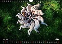 Mothers of Earth, das Leben kann soo prachtvoll sein ! (Wandkalender 2019 DIN A4 quer) - Produktdetailbild 6